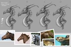 She dragon variations