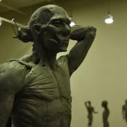 Antomy Tools   Figurative Sculpture Lvl2