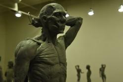 Antomy Tools | Figurative Sculpture Lvl2