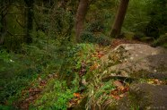 2014.10.24_KNS_0280